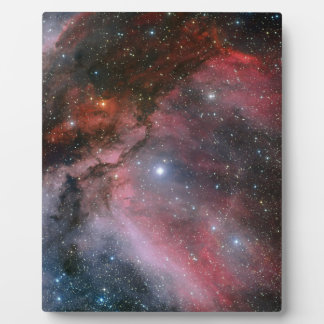Carina Nebula around the Wolf–Rayet star WR 22 Display Plaques