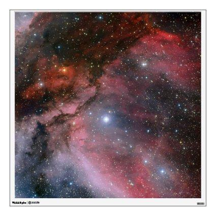 Carina Nebula around the Wolf Rayet star WR 22 Room Graphic