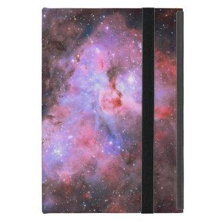 Carina Nebula, WR22, Eta Carinae Cover For iPad Mini