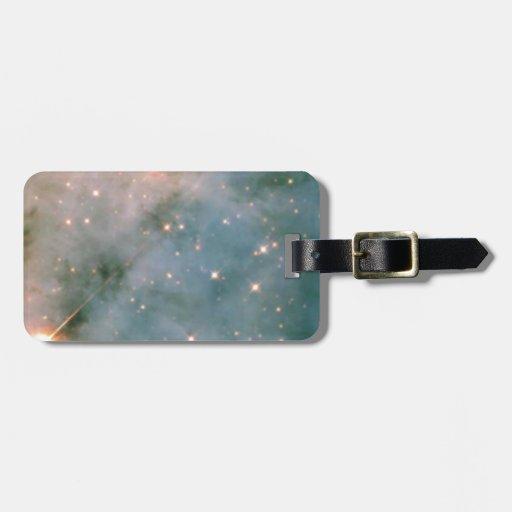 Carina space bag tag