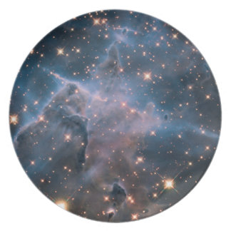 Carina's 'Mystic Mountain' in Infrared Party Plate