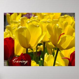Caring art print Yellow Tulip Flower Healing Touch