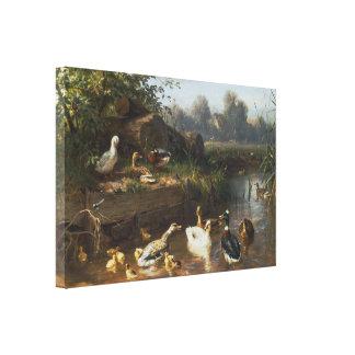 Carl Jutz - patos en el arroyo Impresion De Lienzo