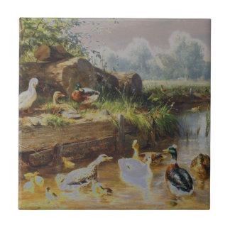 Carl Jutz - patos en el arroyo modificado Teja
