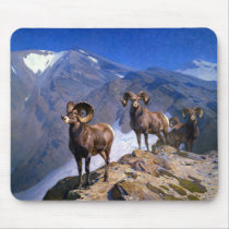 Carl Rungius Big Horn Sheep on Wilcox Pass Mouse Pad
