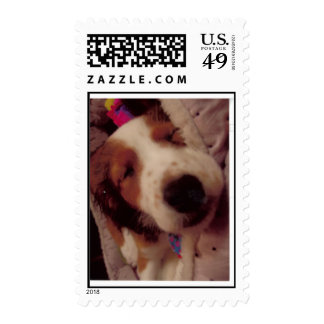 Carla's Puppy on a stamp