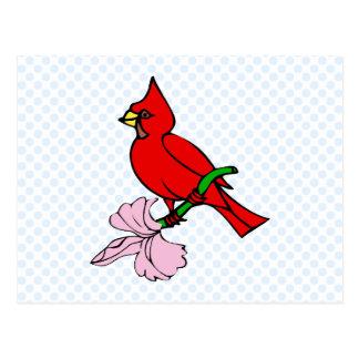 Carleen Cardinal Postcard