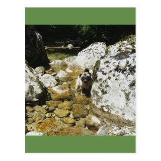 Carlin in mountain postcard