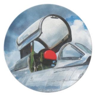 Carlinga del turborreactor de Thunderstreak Plato