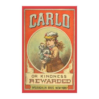 Carlo o la amabilidad recompensó la cubierta de li lienzo envuelto para galerías