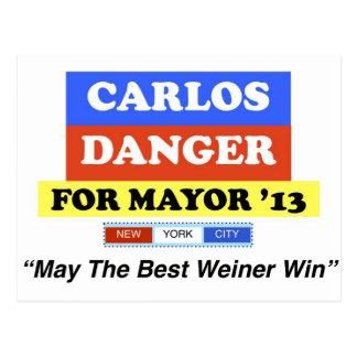 Carlos Danger For Mayor '13 Best Weiner Win Postcard