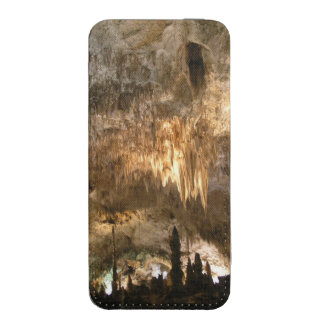 CARLSBAD CAVERNS iPhone 5 POUCH