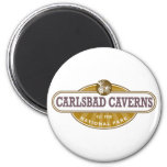 Carlsbad Caverns National Park 2 Inch Round Magnet