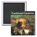 Carlsbad Caverns National Park 2 Inch Square Magnet