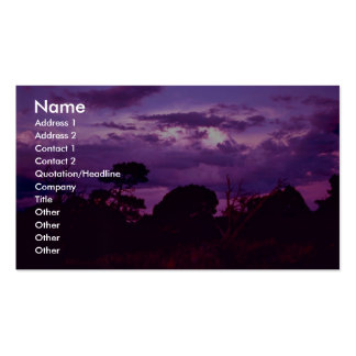 Carlsbad Caverns National Park Double-Sided Standard Business Cards (Pack Of 100)