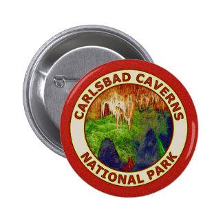 Carlsbad Caverns National Park Pins