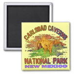 Carlsbad Caverns National Park, New Mexico 2 Inch Square Magnet