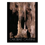Carlsbad Caverns National Park, New Mexico Postcard