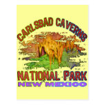 Carlsbad Caverns National Park, New Mexico Postcards