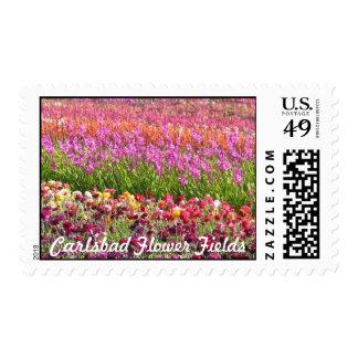 Carlsbad Flower Fields Stamp