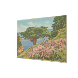 """Carmel Bay, CA - View of """"Old Veteran"""" Tree Gallery Wrapped Canvas"""
