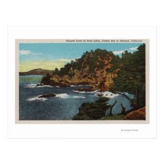 Carmel, CA - Rugged Coast on Point Lobos Postcard