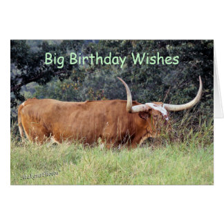 Carmel Longhorn-customize any occasion Greeting Card