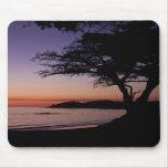 Carmel, puesta del sol Mousepad de CA Tapete De Ratón