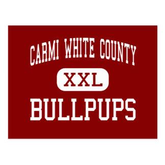 Carmi White County - Bullpups - Middle - Carmi Postcard