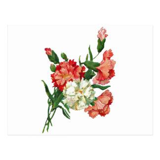 carnation1 3800 postcard