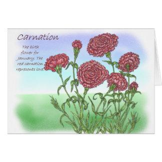 Carnation Cards