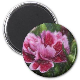 carnation in the garden magnet