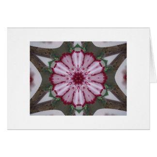 Carnation Kaleidoscope Cards