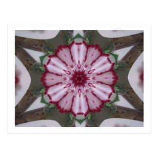 Carnation Kaleidoscope Postcard