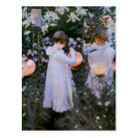 Carnation, Lily, Lily, Rose Postcard