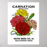 Carnation Vintage Seed Packet Poster
