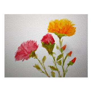 Carnation Water Colour Painting Post Card