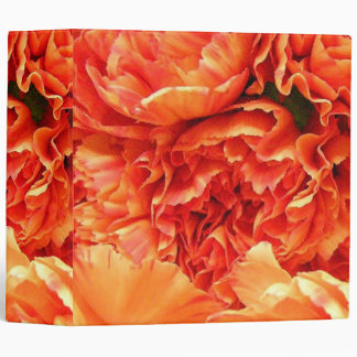 "Carnationa anaranjado carpeta 2"""