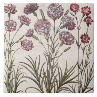 Carnations: 1.Caryophyllus flore majore; 2. Caryop Ceramic Tile