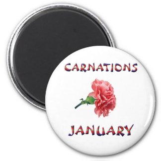 Carnations January Flower Magnet