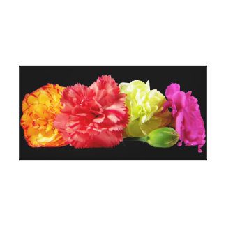 Carnations Wrapped Canvas Gallery Wrapped Canvas