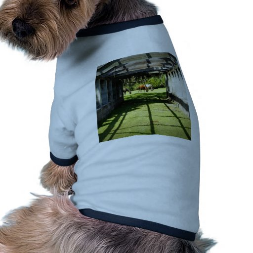 Carnegie Pergola Doggie Tee Shirt