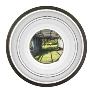 Carnegie Pergola Pet Bowl