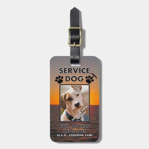 Carnet con foto del perro del servicio de Skybird Etiquetas De Maletas