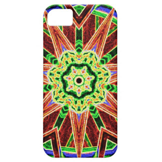 carnival iPhone 5 cases