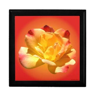 Carnival Rose Gift Box