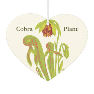 Carnivorous Cobra Pitcher Plant Air Freshener