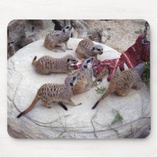 Carnivorous_Meerkats,_ Mouse Pad