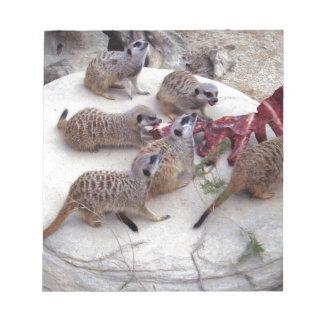 Carnivorous_Meerkats,_ Note Pad