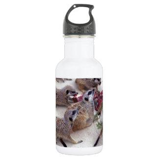 Carnivorous_Meerkats,_ Water Bottle